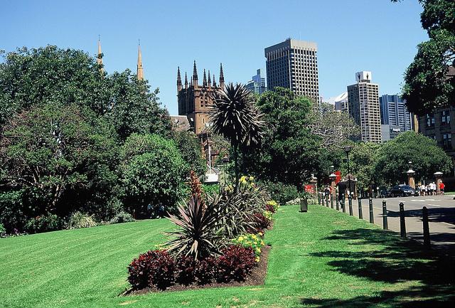Garden Sydney