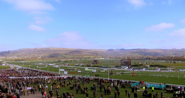 Four days at the Cheltenham Festival